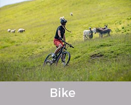 Bike Sortiment